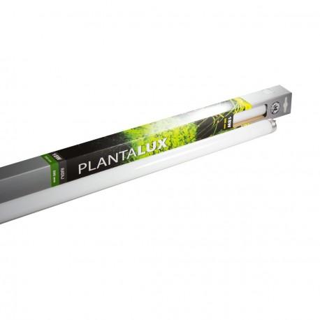 Zářivka PLANTALUX T8 15W