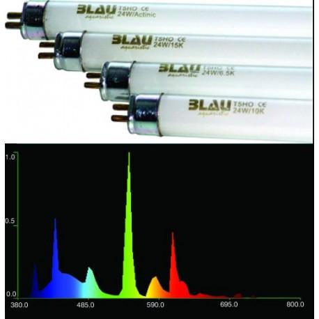 Zářivka BLAU T5 24W 6500K