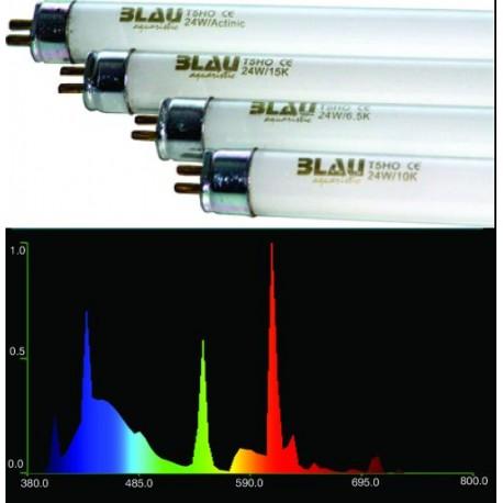 Zářivka BLAU T5 24W 3600K color extrem