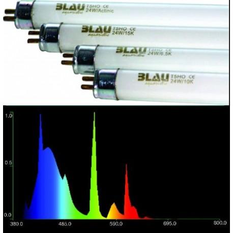 Zářivka BLAU T5 24W 15000K