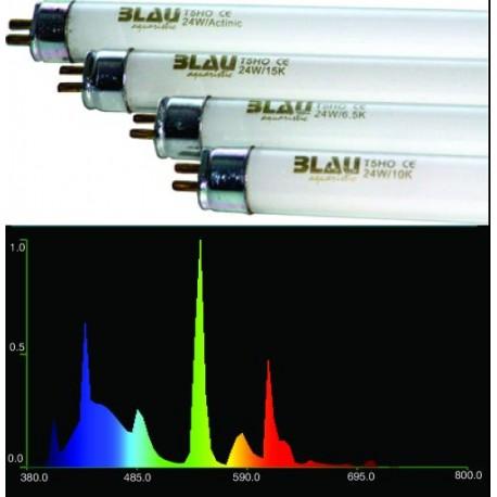 Zářivka BLAU T5 24W 10000K
